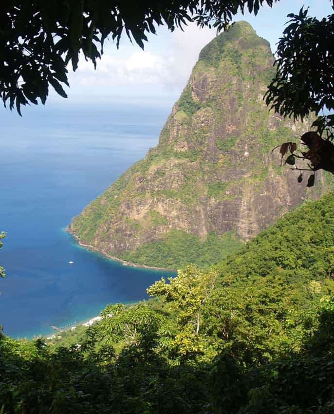 Climb the Pitons: Gros Piton Nature Trail